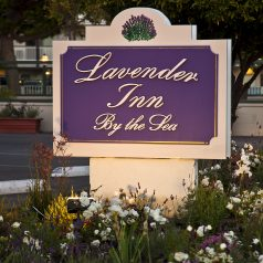 Lavender Inn by the Sea Sign