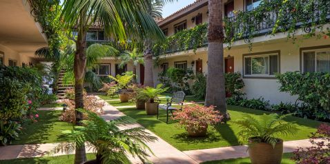 Lush garden courtyard with access to many guest rooms. Palm trees and tropical plants